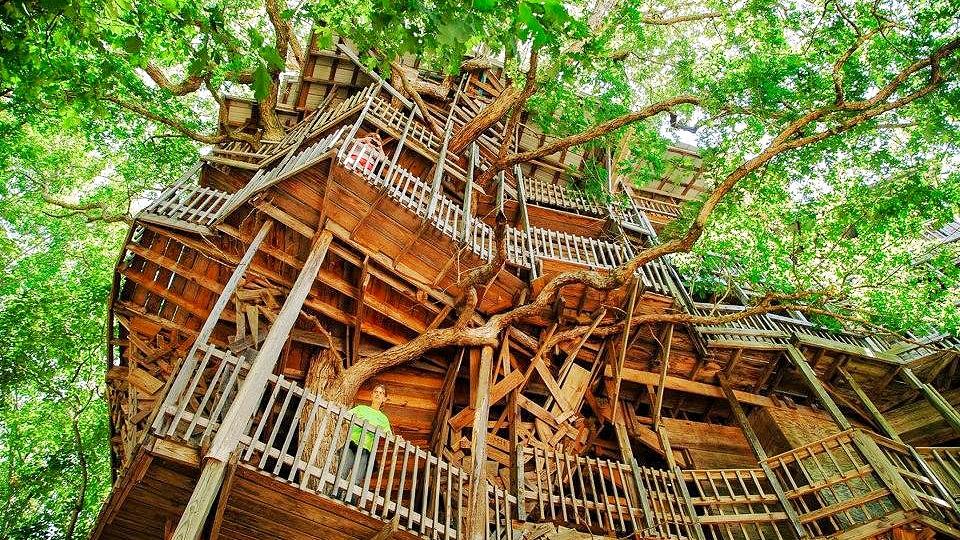 Дом на деревьях своими руками фото